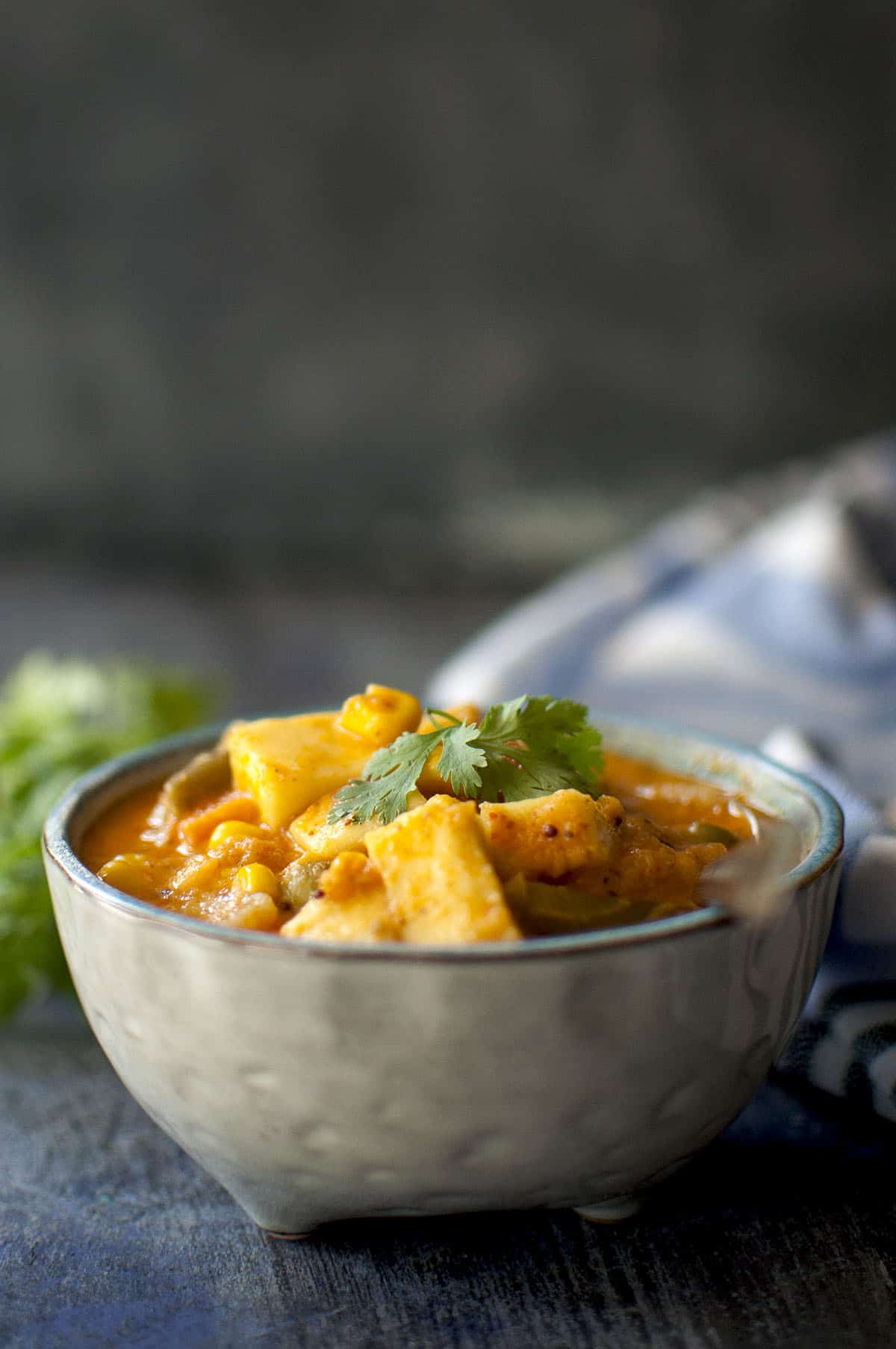 Grey bowl with vegetable curry and cilantro on top