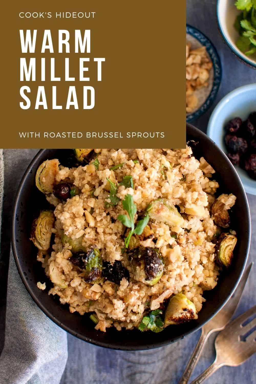 Warm Millet salad