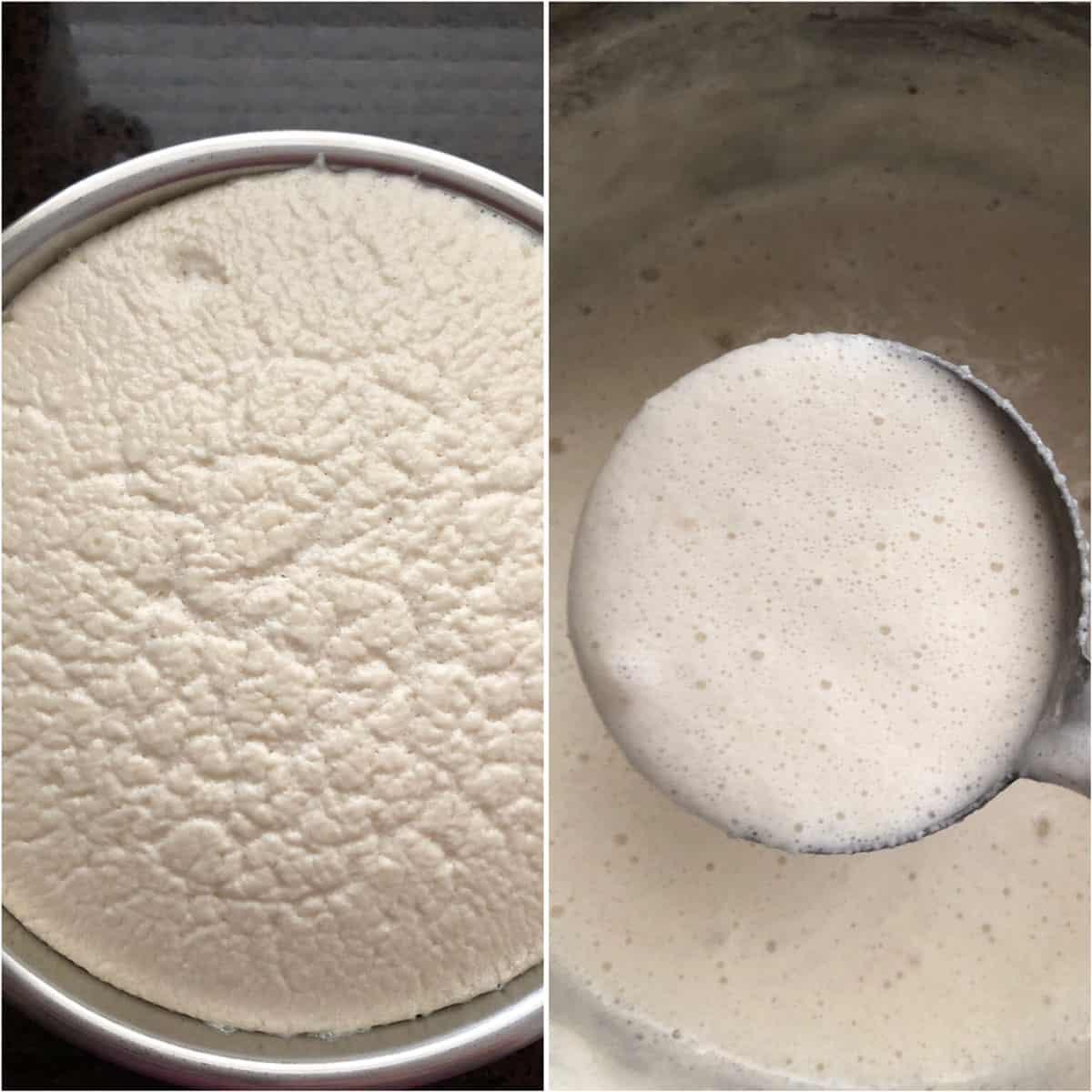 Photos of well fermented batter