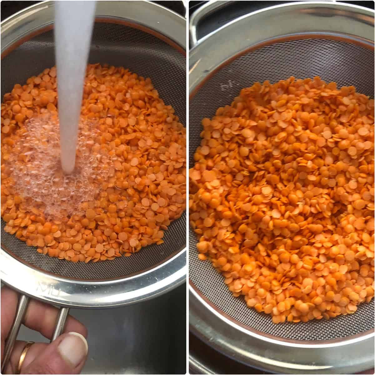 Washing red lentils in a sieve